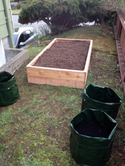 Raised bed built from fence pickets